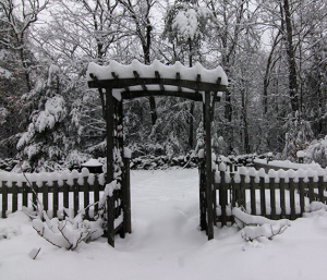 Fences, arbors and gates add winter interest to the garden