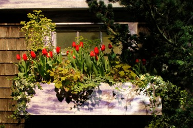 Boston Flower Show exhibit - Spring is coming